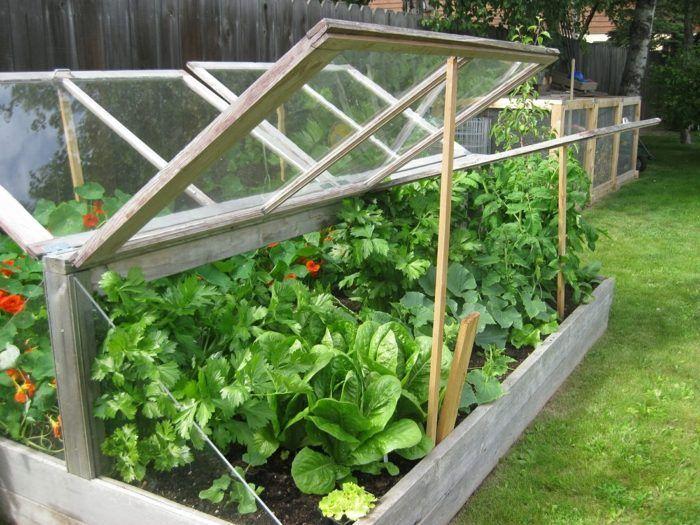 Ein Garten Frühbeet aus Holz zweiseitig zu öffnen