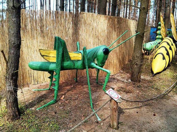 Park rozrywki Mega Park w Grudziądzu to doskonały pomysł na weekend. Atrakcje to m.in. zoo, Dziki Zachód, Kraina Baśni, Bajek i Legend, Safari i wiele innych. Więcej szczegółów na: http://www.nocowanie.pl/noclegi/grudziadz/parki_rozrywki/142141/