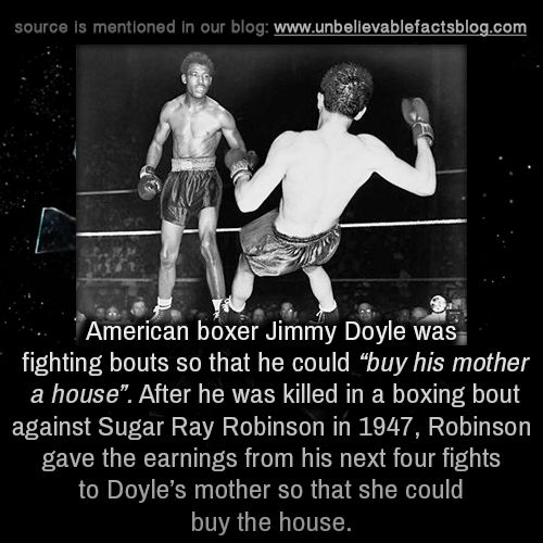 Unbelievable boxing fact
