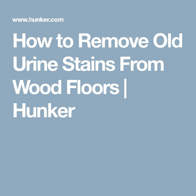 How to Remove Old Urine Stains From Wood Floors | Hunker