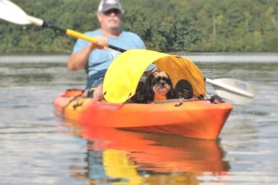 Dog Paddling Sun Shade For Kayaks Canoes And Sups Yellow 139 Do You Go Or Want To Spend Time Kayaking With Dogs Kayaking Tandem Kayaking