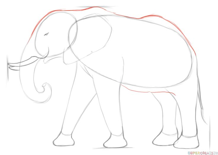 How To Draw Elephant Step By Step For Kids