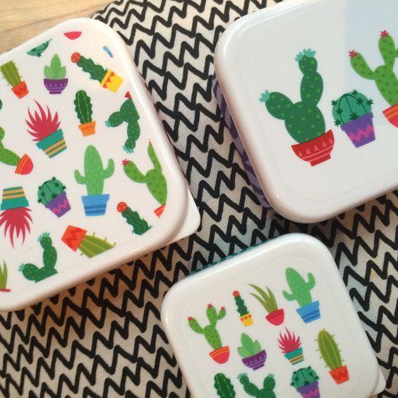 Set di 3 Contenitori per Alimenti Cactus 🎍🌵 #puckatorcactus
