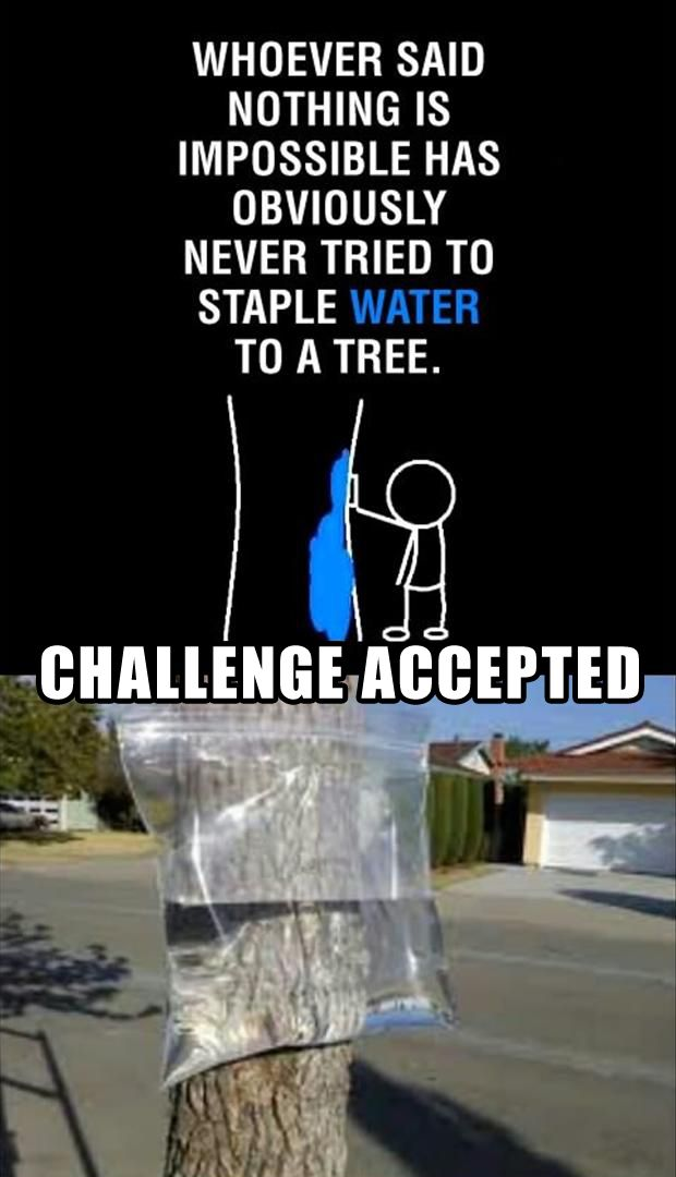 Best Of, Challenge Accepted Meme – 36 Pics
