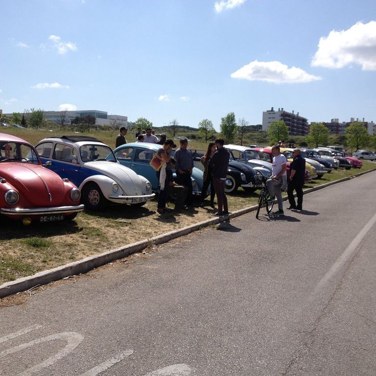 Sunday morning monthly in Seixal. Sun, friends, coffee and vw's.