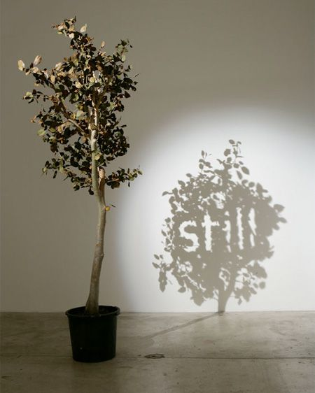 Wonderful shadow art created by talented Belgian artist Fred Eerdekens.      Strategically placed objects cast shadows that form words and images.