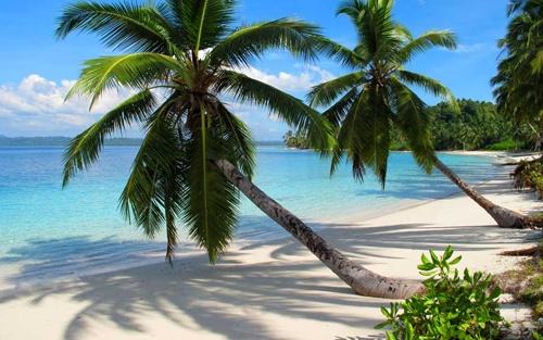 Aloita Resort and Spa on Simakakang Island of Mentawai Archipelago West Sumatra