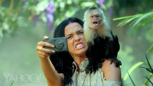 10 Important Katy Perry 'Roar' GIFs