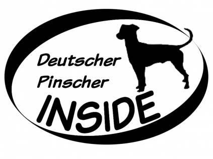 Hund Inside Auto AufkleberInside Aufkleber: Deutscher Pinscher 1