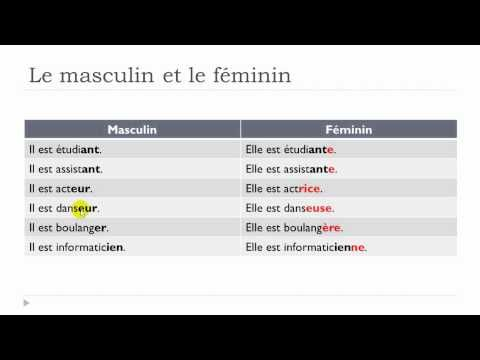Learn French with Vincent - Unit 1 - Lesson N : Le masculin et le féminin - learn French with www.courseworld.org!