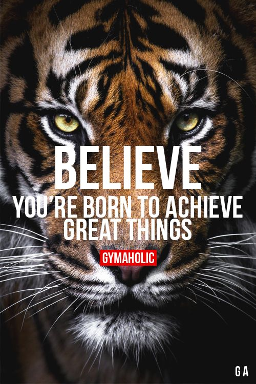 gymaaholic:  Believe You're born to achieve great things! http://www.gymaholic.co
