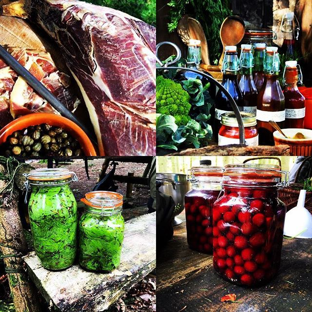 'Fancy a real taste of the outdoors? How about trying one of our wild food cookery courses. We can lead you and your team on a walk to forage for local wild foods and then use them to create some amazing dishes all cooked using traditional methods #wildfood #eatsleepworkretreat #cookery #campfire #retreat #eventprofs #bushcraft #eventprofsuk #outdoorevents #rewilding #foraging #getoutside #lakedistrict #windermere #cook #food #meals #outdoorcooking #venue #unique #adventure #teambonding…