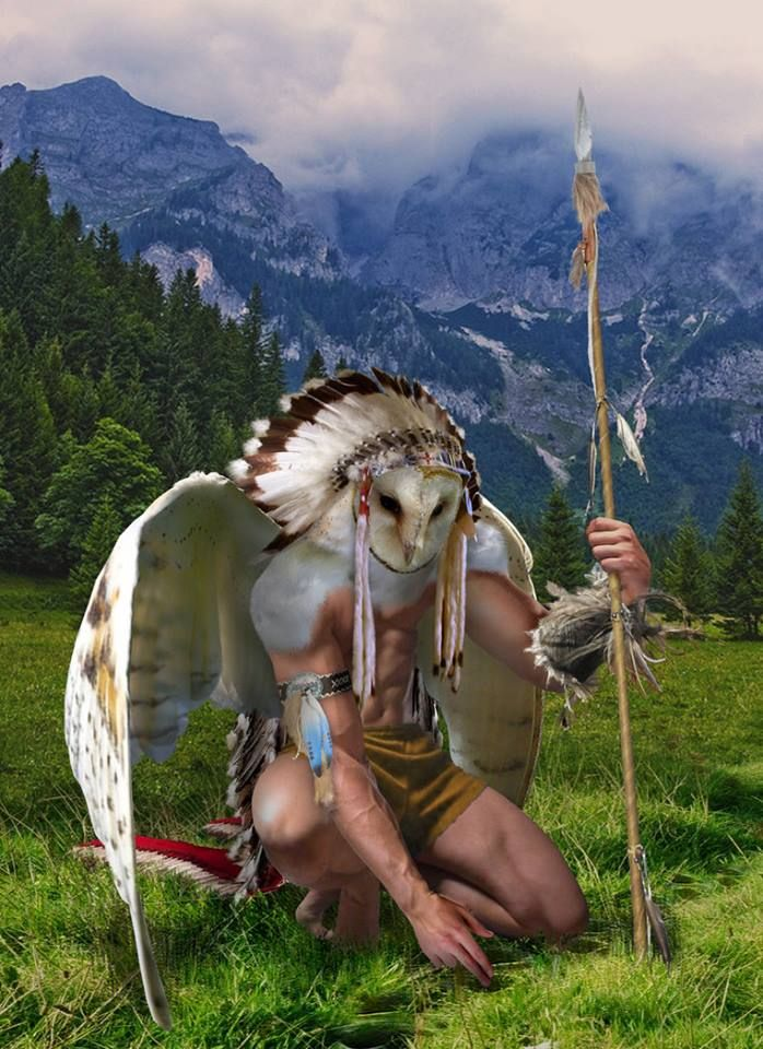 31 Best Images About Native American Animal Spirit On