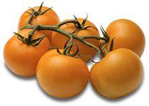 Batatas Gourmet - Batata Charlotte - Catálogo de Produtos - FIEL - Importação e Exportação de Frutas e Legumes