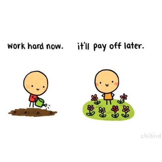 best hard work pays off ideas i will love you hard work pays off quotes like success