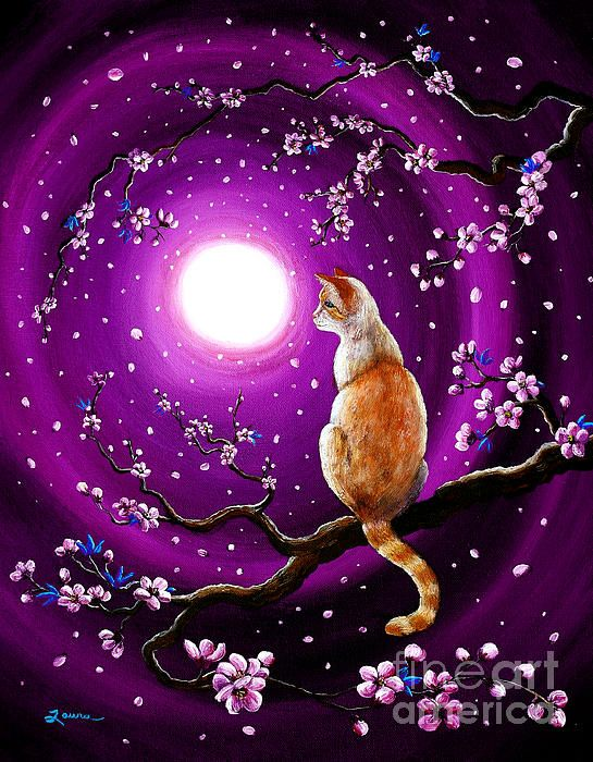 Flame Point Siamese Cat In Dancing Cherry Blossoms by Laura Iverson