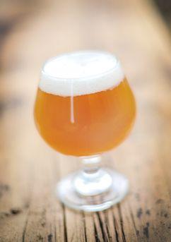 Belgian IPA - Beer Recipe - American Homebrewers Association