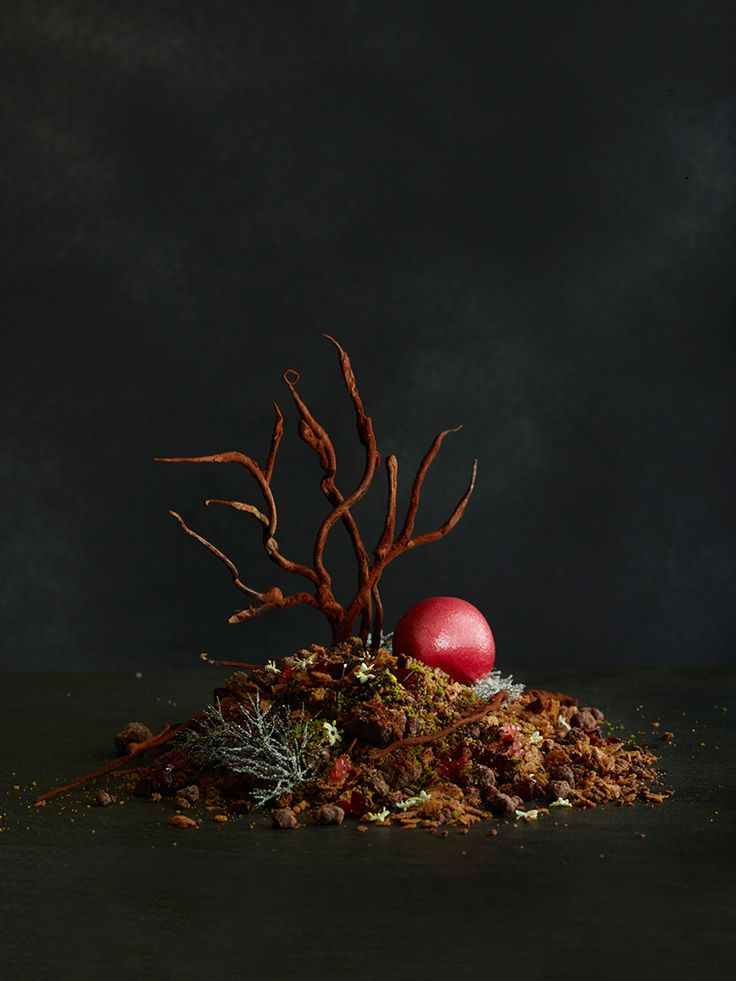 Chocolate Forest by chef Martin Benn of Sepia. © Sepia - See more at: http://theartofplating.com/news/chocolate-forest-by-martin-benin/#sthash.k97ZzR0f.dpuf