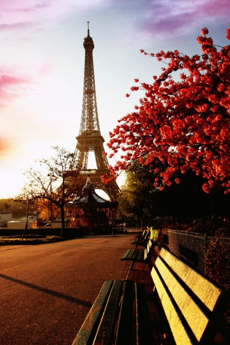 : One Day, Romantic Travel, Oneday, Benches, Dreams, Eiffel Towers, Paris France, Places, Travel Destinations