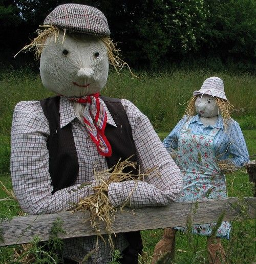 Make a scarecrow.  http://www.ehow.com/how_3981_make-scarecrow.html