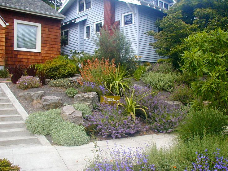 77 best Drought Tolerant Curb Appeal images on Pinterest - drought tolerant garden designs