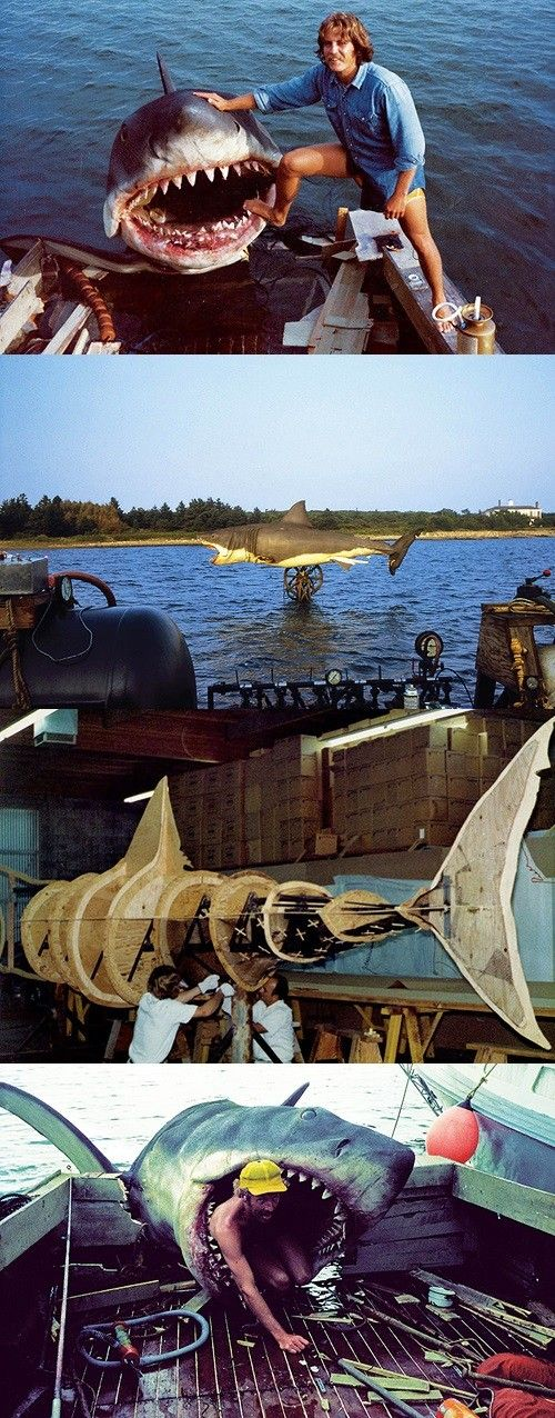 On the set of Jaws (1975)  Spielberg said the Shark worked only part of the time, it was frustrating to see if it decided to work or not.