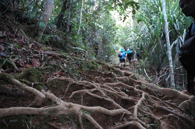 The Kokoda Trail  [I MUST do this]     PNG
