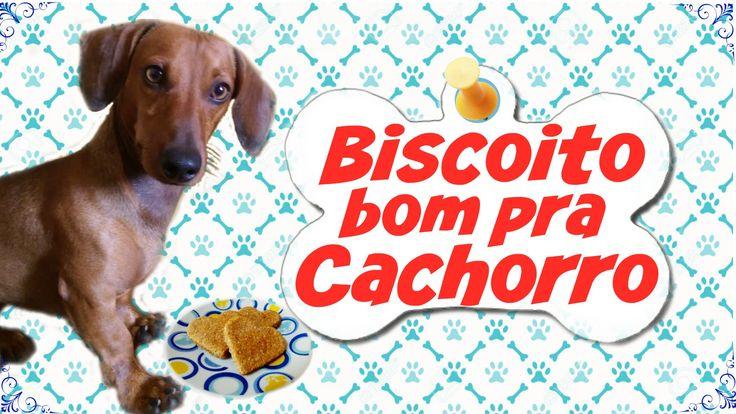 Biscoito para Cachorro – Só 2 Ingredientes