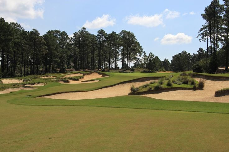 Review of Forest Creek Golf Club's North Course