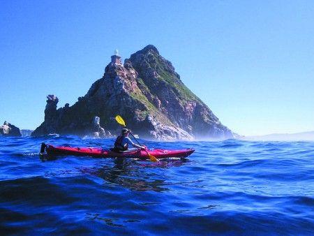 Sea Kayaking with Penguins