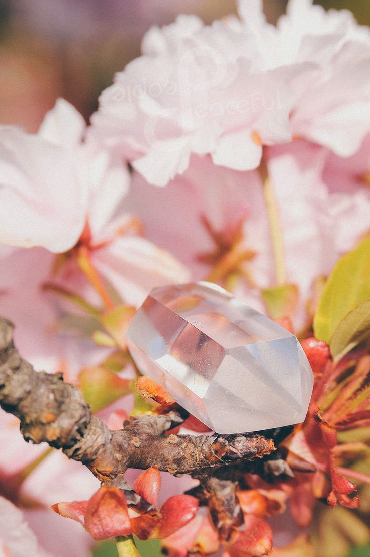 Clear Quartz Crystal with Japanese blossom cherry :) sweet as sugar :D https://peacefulpeoplejewellery.wordpress.com/