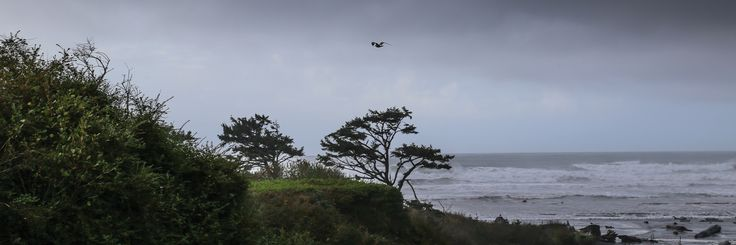 What to expect from spring, summer, fall and winter weather at Olympic National Park and Kalaloch. Dramatic clouds and waves are always in-season here.