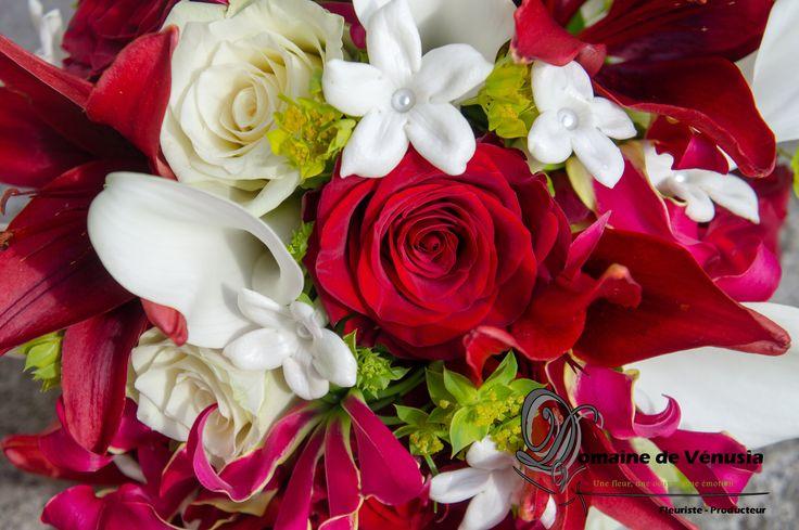Bouquet de marié, fleurs fraîches Lys rouges, roses rouges, callas blancs, stéphanotis et beupleurum