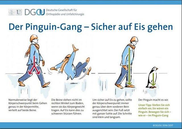 Περπατήστε σαν... πιγκουίνοι για να μην γλιστράτε στον πάγο: Οι Γερμανοί χειρουργοί τραυμάτων συνέστησαν στους πολίτες να περπατούν σαν……