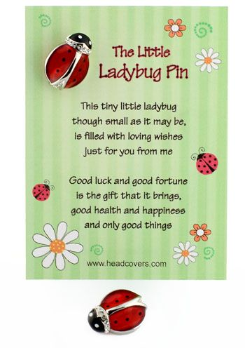 90 Curated Ladybug Love Ideas By B4smamj Pin Cushions