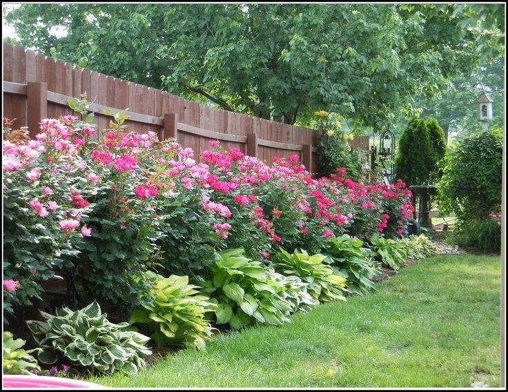 The 25 Best Landscaping Along Fence Ideas On Pinterest