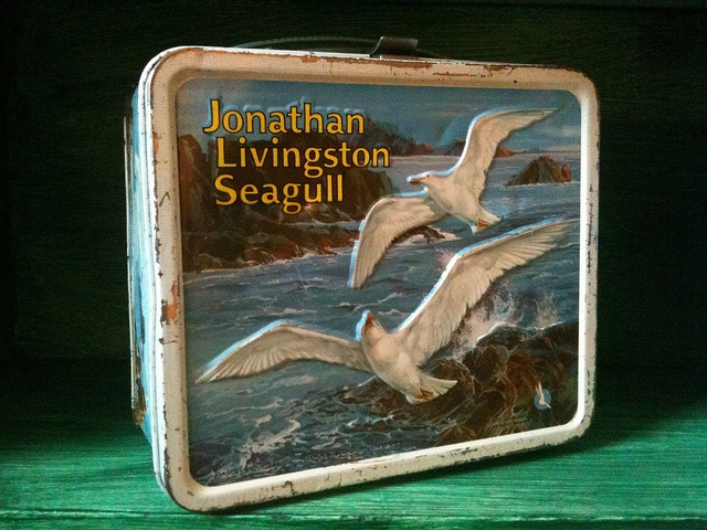 an analysis of jonathan livingston seagull by richard bach Jonathan livingston seagull (1973) on imdb: movies, tv, celebs, and more   in fact, richard bach, the writer, fought tooth and nail to prevent exactly that   unfortunately, so is the movie, and it is this literal interpretation of the book that.