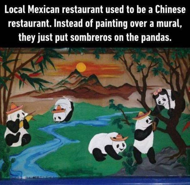 Funny Pictures For Today (#103)