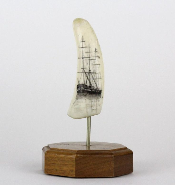 Sailing Ship Scrimshaw Decorated Whales Tooth