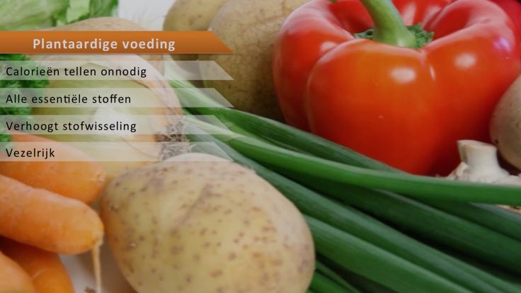 Wilt u ook beter op uw voeding letten? Kijk dan op: Webshop: http://www.stichtinggezondheid.nl/product-categorie/voeding/ Blog: http://www.stichtinggezondheid.nl/blog