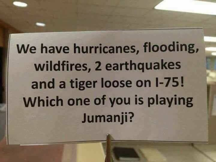 And I recently saw a trailer for the new Jumanji movie. Hmm. Curious...