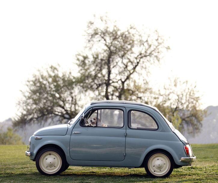 128 Best Images About Old Fiats On Pinterest