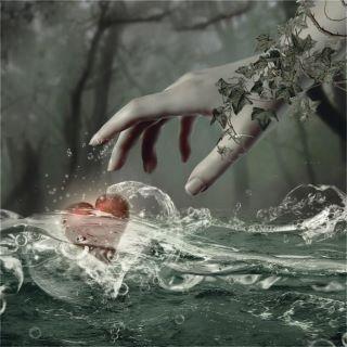 mano che raccoglie cuore