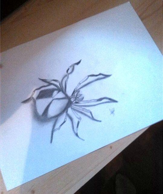 Pók | Képek / rajzok