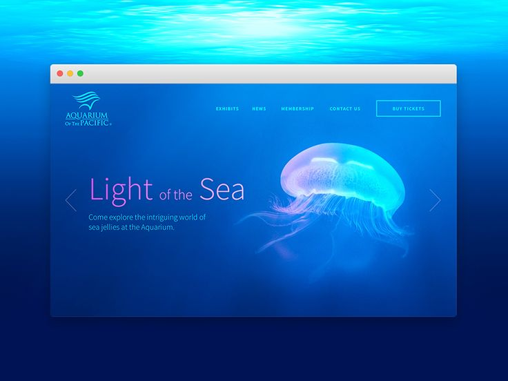 For dailyUI 003, I redesigned the landing page for Aquarium of the Pacific. :)