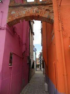 Pink & orange #neighbours