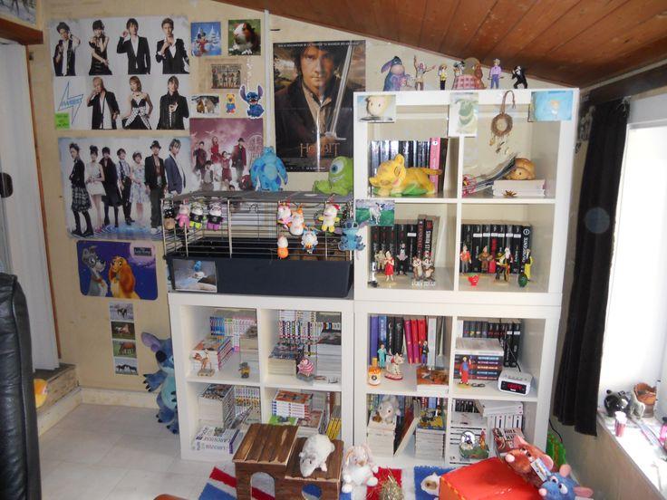 Book shelf 1 ( re-organized)