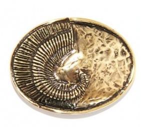 Umjubelt Gürtelschnalle -Schneckenoval gold-  hier haben Sie die Möglichkeit sich eine passende Gürtelschnalle für Ihren individuellen Gürtel zu kaufen.        Die Herstellung dieser hochwertigen Gürtelschnallen erfolgt ausschließlich mit nickelfreien Materialien.