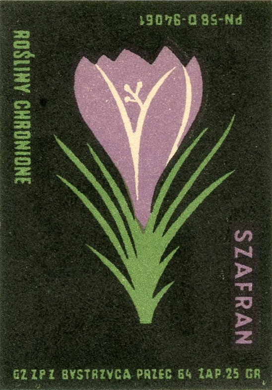 vintage Polish matchbox label