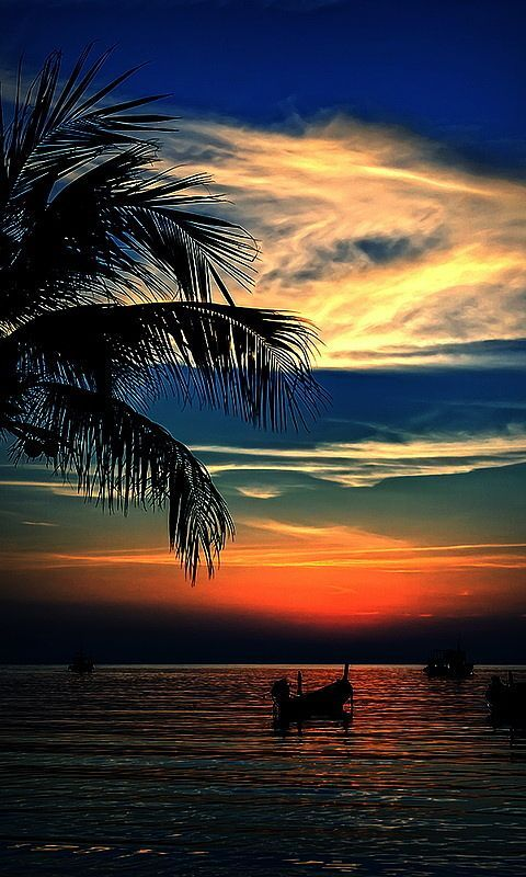 Beach Sunset - Acapulco, Mexico